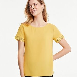 NWT LACE SLEEVE PONTE TOP by Ann Taylor